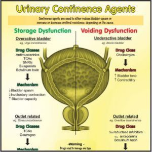 Incontinence drugs