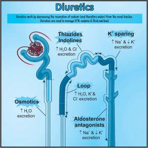 Diuretics poster