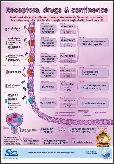 Receptors, drugs A3